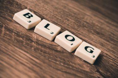 ブログ9ヶ月目の運営報告!PV数や収益など!